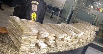 Polícia apreende 100 kg de maconha em Campos